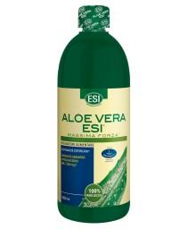 Aloe Vera Succo Max Forz1000ml