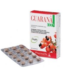 Guarana 100% 60cpr